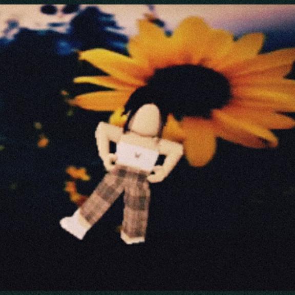 Roblox Profile Picture Sunflower Alexia Roblox 90 Stars Tiktok Profile