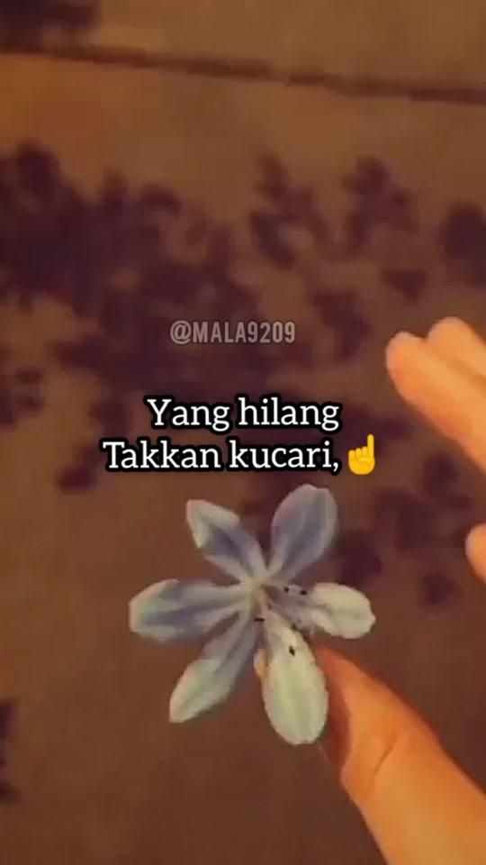 @mala9209